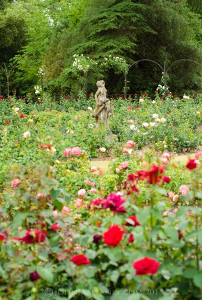 Blenheim Palace - Rose Garden
