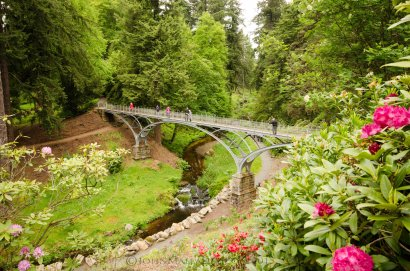 Iron Bridge - Cragside House