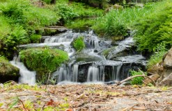 Small Waterfall - Cragside House