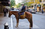Mounted NYPD officer