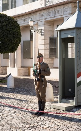 Guarding the Presidential Palace