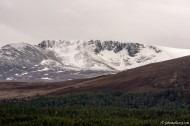 The Cairngorms