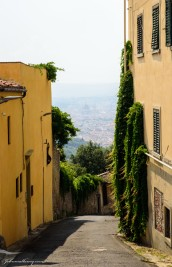 Views of Florence from Fiesole